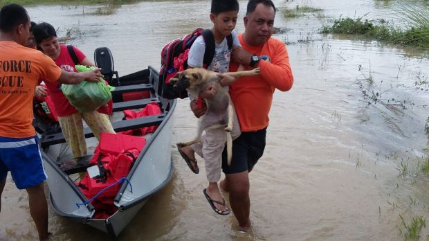 A boy and his dog are carried to higher ground in Isabela province, northern Philippines, on Monday.