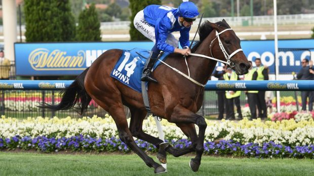 Star-studded return:  Winx will appear in barrier trials on Tuesday.