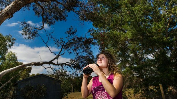 Birdwatcher Emily Scicluna in the back yard of her Lara home.