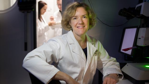 The work of geneticist Coral Warr, who works with fruit flies, could have implications for research into neurological ...