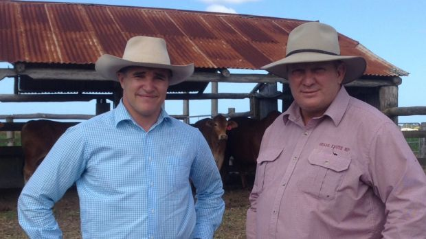 Robbie Katter and Shane Knuth are considering forcing a referendum on north Queensland becoming its own state.