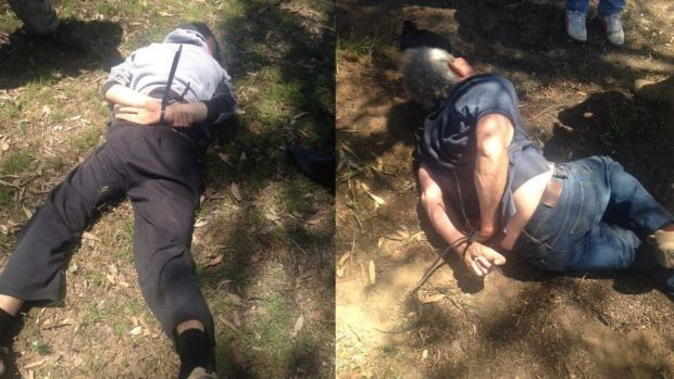Gino and Mark Stocco were captured at a property near Dunedoo in NSW's central west.
