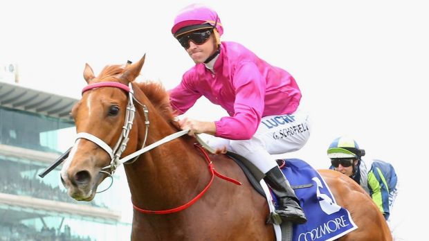 Traveller:  Japonisme's surprise win in The Coolmore Stud Stakes could mean a trip to Royal Ascot.
