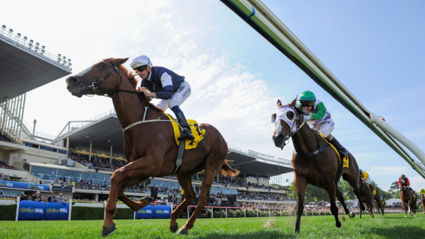 Tote betting: Trip to Paris is the Melbourne Cup favourite.