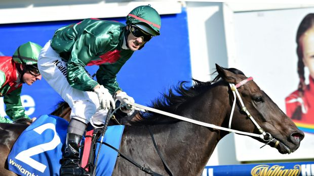 Sertorius has been backed by Tom Waterhouse to the tune of $5 million.