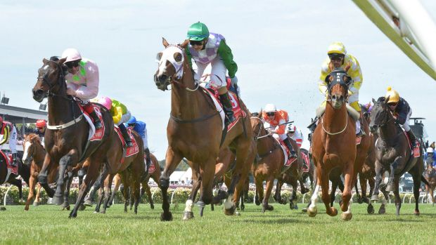 Pleasure and Payne: Michelle Payne (green cap) on Prince of Penzance wins the Melbourne Cup.