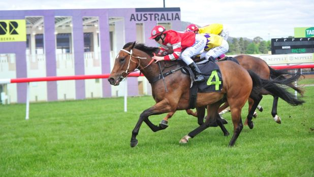 The Tara Costigan Foundation will raise much-needed funds through a race-day at Canberra's Thoroughbred Park.