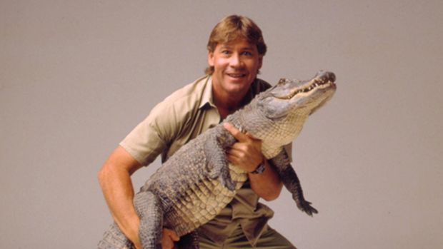 Steve Irwin was killed in 2006 after being struck by a stingray barb in the heart while snorkelling at Batt Reef in ...