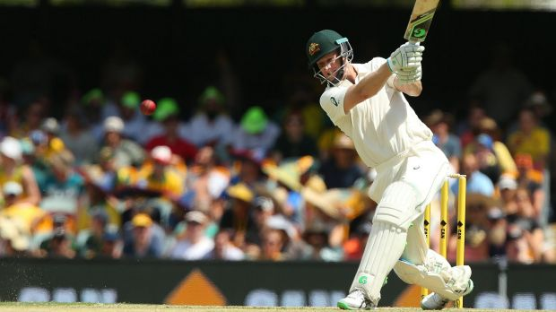 Guiding hand: Adam Voges hits out against the Kiwis at the Gabba on Friday.