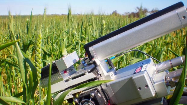 An instrument used by Australian researchers to assess energy efficiency, measuring photosynthesis (energy captured) and ...