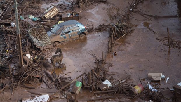 The Fundao tailings dam collapsed in November, leaving 17 people dead.