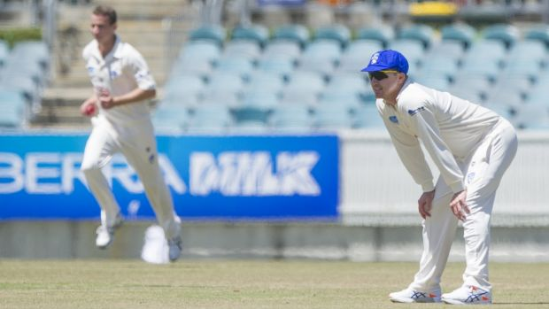 Brad Haddin fields for the Comets on Monday.