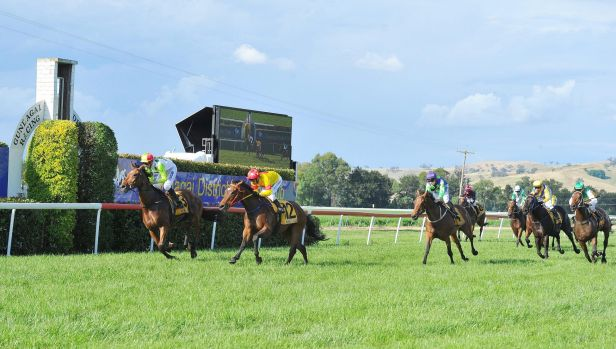 Zero to hero: Zero To Ten takes out the Snake Gully Cup for local trainer Jim Scobie.
