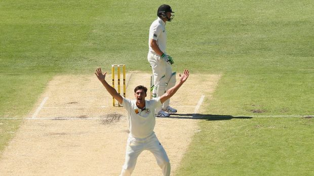 Got him: Mitchell Starc takes the wicket of Martin Guptill during day two of the second Test between Australia and New ...