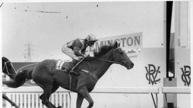 Birth of a legend: Cassidy and Kiwi after the famous last-to-first victory in the 1983 Melbourne Cup.