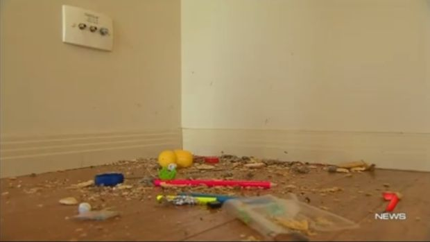A couple who lost their two-year-old son in a house fire in May had a luxury house rented for them and their five ...