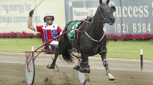 Back in action: Dual Inter Dominion champion Beautide trialled at Menangle on Friday.