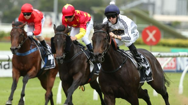 """American dream: Jason Collett and Yankee Rose (right) take out the Jimmy """"The Pumper"""" Cassidy Golden Gift at Rosehill."""