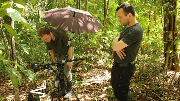 Researchers Chris Reid (left) and Matthew Lutz in the ant jungle.