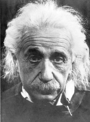 "The word 'genius' ""is properly reserved"" for the likes of Albert Einstein, a judge had found."