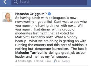 """Liberal MP Natasha Griggs has criticised coverage of """"monkey pod"""" meetings of conservatives at Parliament House."""
