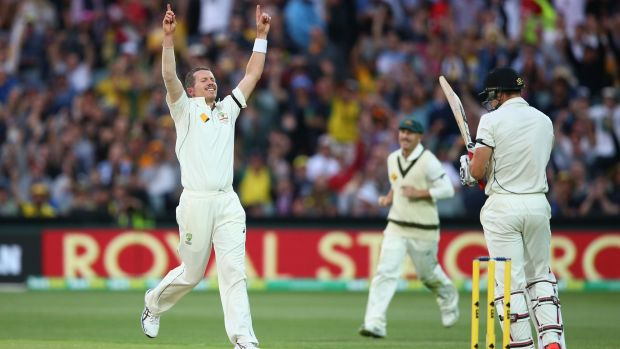 Milestone man: Peter Siddle captures his 200th Test wicket.