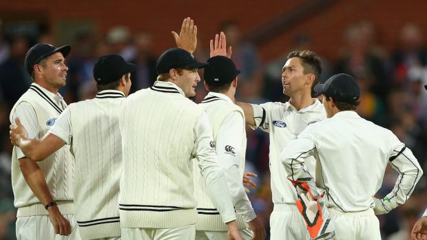 Modest movement: Tim Southee celebrates the wicket of David Warner.