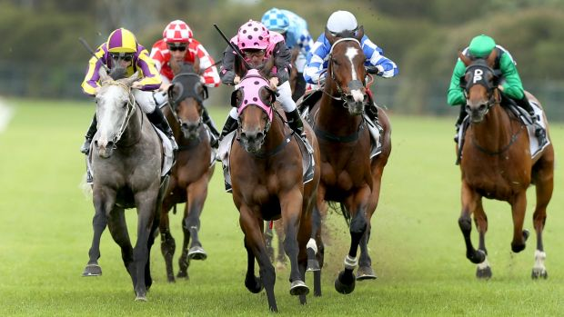 Pretty in pink: Kerrin McEvoy and Dublin Lass storm home in the Starlight Stakes.