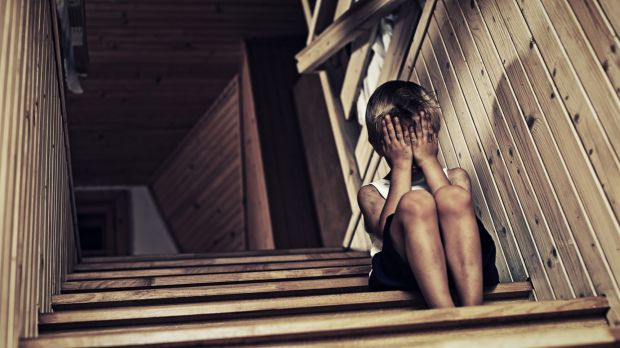 The state's child protection system is in crisis and needs a complete overhaul according to the findings of a ...