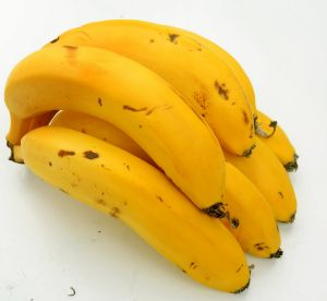The Cavendish banana is under threat.