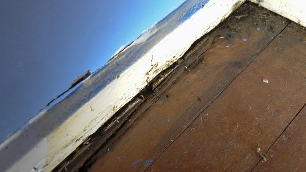 Rotting floorboards in one of the four bedrooms of the government housing residence home to seven family members.