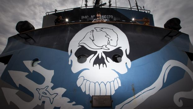 Sea Shepherd dispatched its ship Steve Irwin to patrol the Southern Ocean over summer but was unable to locate the ...