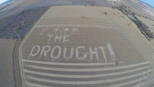 One farmer's reaction after drought ruined his crop.