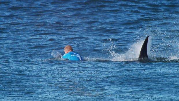 Close call: Australian surfer Mick Fanning's encounter with a shark drew international headlines in 2015.