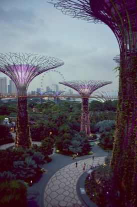 A man-made paradise in Singapore.