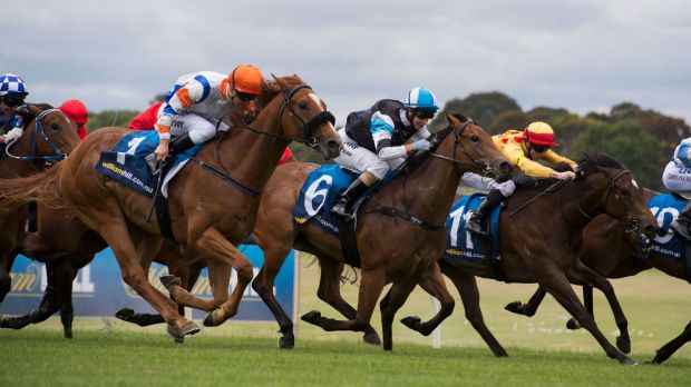 Inglis Nursery hope:  Kerrin McEvoy riding Jackson (No.1) to a win at Sandown last month.