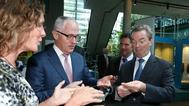 Prime Minister Malcolm Turnbull and Industry Minister Christopher Pyne visited CSIRO in December to launch their ...