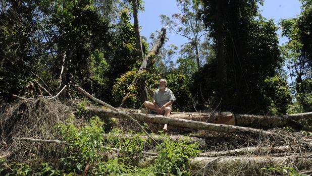 Dailan Pugh sits in an area of potentially illegal logging in the Cherry Tree State Forest that the EPA decided not to ...