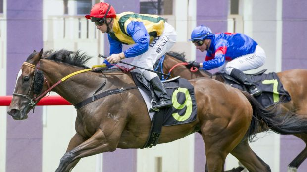 Goulburn jockey Richie Bensley guides Miss Liffey to victory at Canberra.