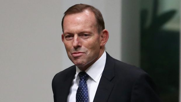 Former prime minister Tony Abbott faces a new challenge in his own electorate.