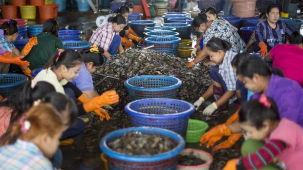 Female workers sort shrimp at a seafood market in Mahachai, Thailand.