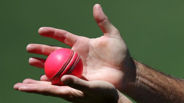 Opinions are divided on the use of the pink ball in one-dayers.