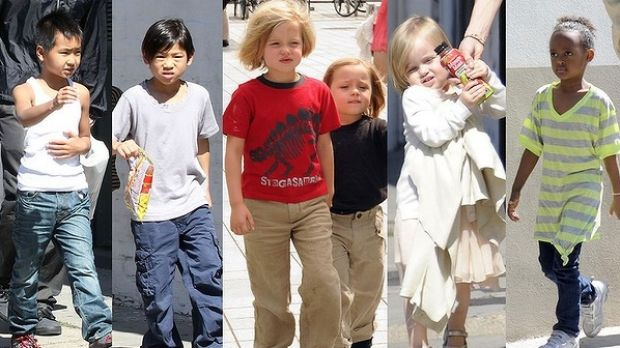 The six children, Maddox, Pax, Shiloh, twins Knox and Vivienne, and Zahara, that the couple already have.
