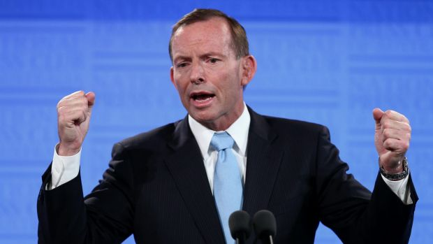 Former prime minister Tony Abbott has given grass roots followers the clear impression he will carry on as an MP.