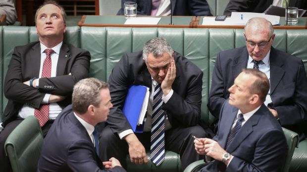 Barnaby Joyce (top left) with other members of the frontbench of former prime minister Tony Abbott (bottom right).