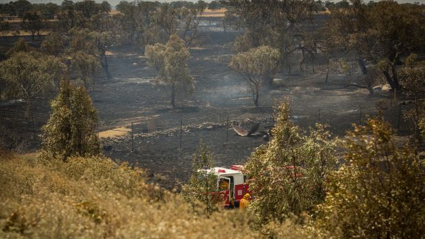 The grassfire at Epping