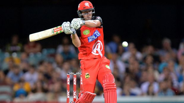 In form: Cameron White on his way to 55 in the Renegades' seven-wicket Big Bash League win over Brisbane Heat on ...