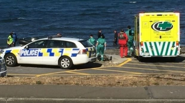 The diver who died after being hauled from the water off the south coast of Wellington on Sunday has been identified as ...