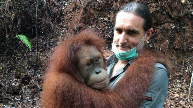 """""""Orangutans trick the shit out of you – this shows theory of mind,"""" Leif Cocks says."""