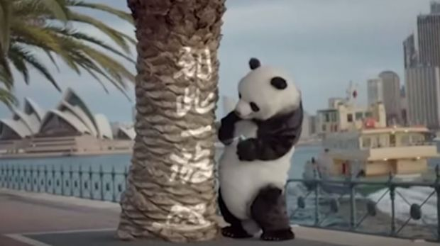 """A still from a China state TV film """"Bad Panda"""", which teaches Chinese tourists to behave well overseas. Here Bad Panda ..."""